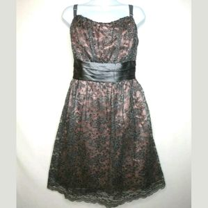 Torrid dress Silver gray lace Pink lining Plus 18